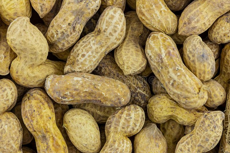 Heap whole peanuts pattern earthen fruit traditional snack beer bar long beans light beige background royalty free stock photos