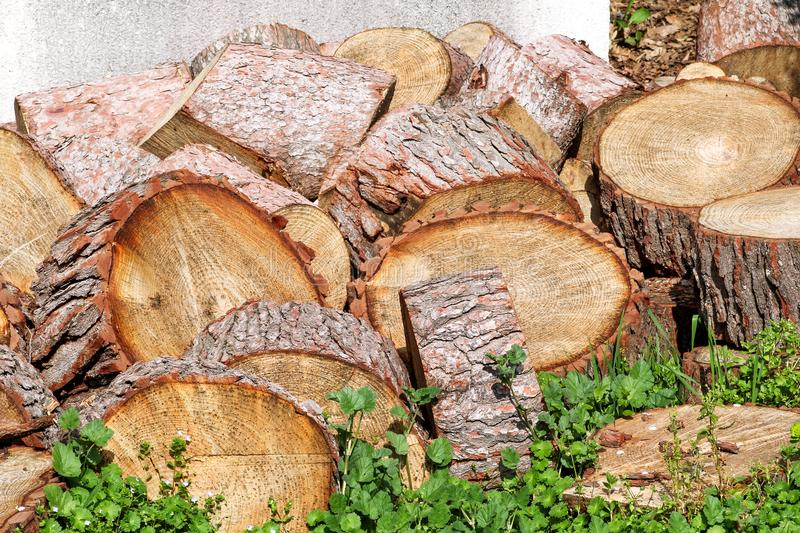 Heap of wood logs ready for winter. Cut tree trunks on grass. Stack of chopped firewood. A pile of woods in the house storage. royalty free stock images