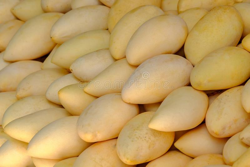 Heap of yellow mango on food market in Thailand stock photography