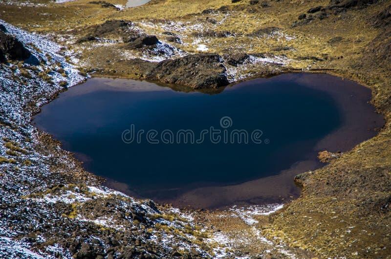 Heart湖,安地斯,玻利维亚 库存图片