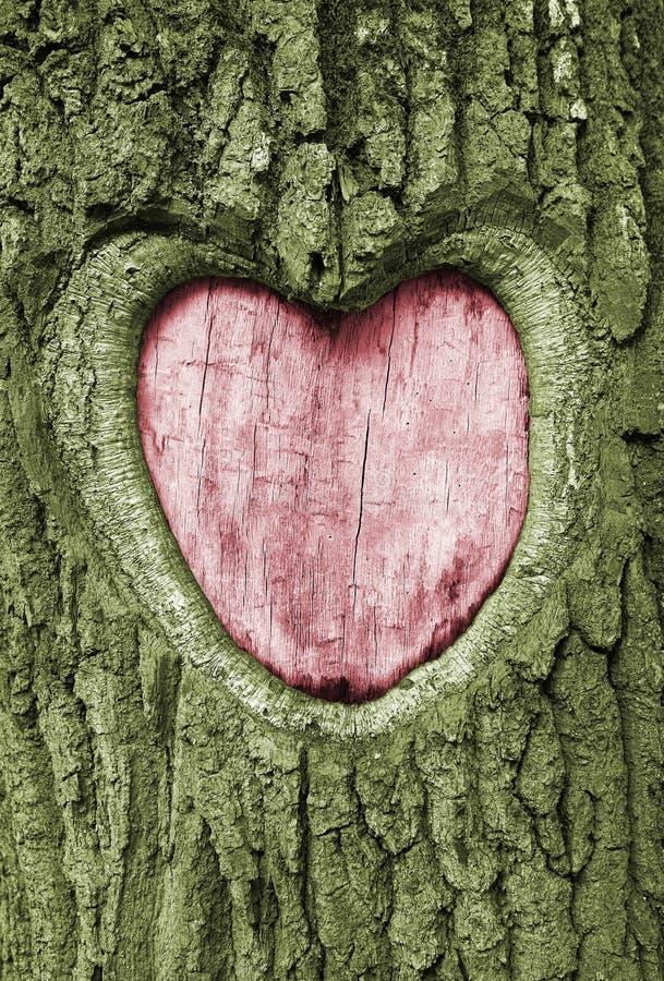 Free Heart Royalty Free Stock Photo - 11855325