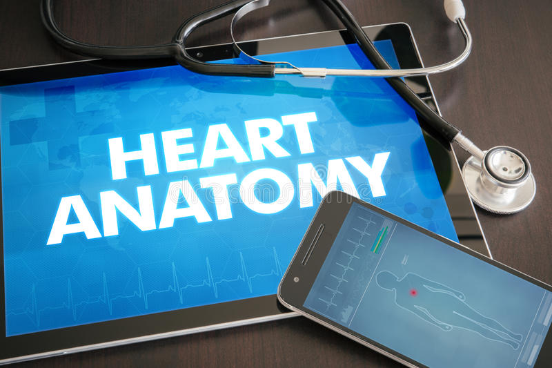 Heart anatomy (cardiology related) diagnosis medical concept on. Tablet screen with stethoscope royalty free stock photography