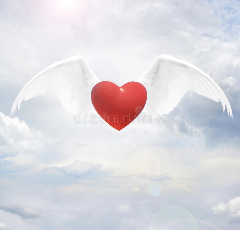 Heart with angel wings stock photography