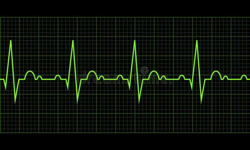 Heart beat. Cardiogram. Cardiac cycle vector illustration