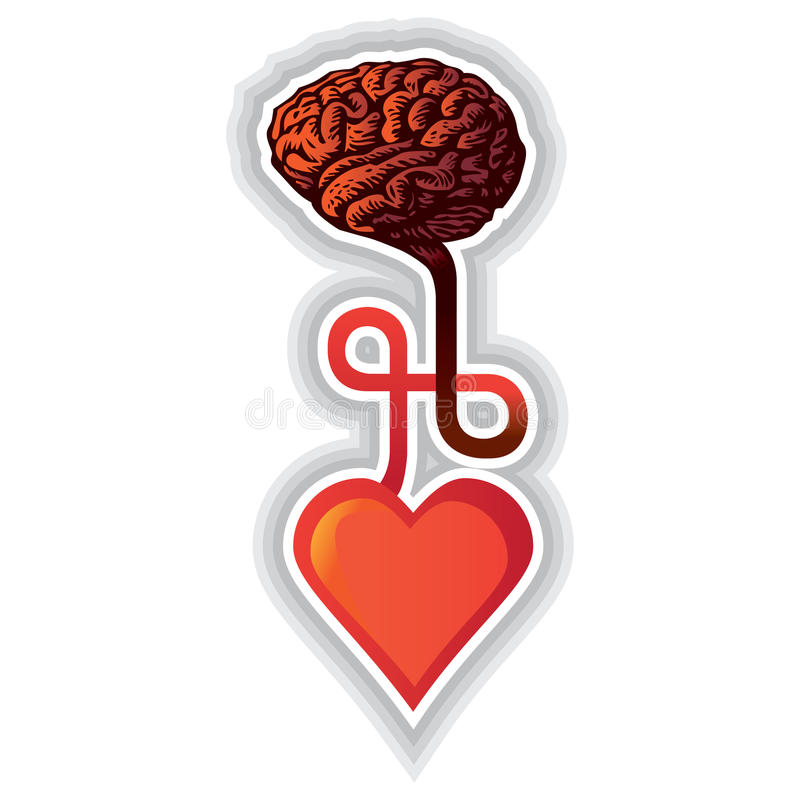 Heart and brain stock illustration