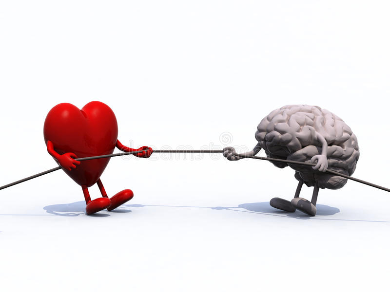 Heart and brain tug of war rope vector illustration