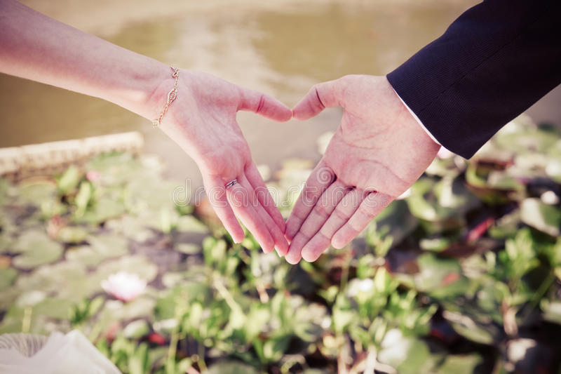 Download Heart stock image. Image of concept, cute, groom, marriage - 65817863