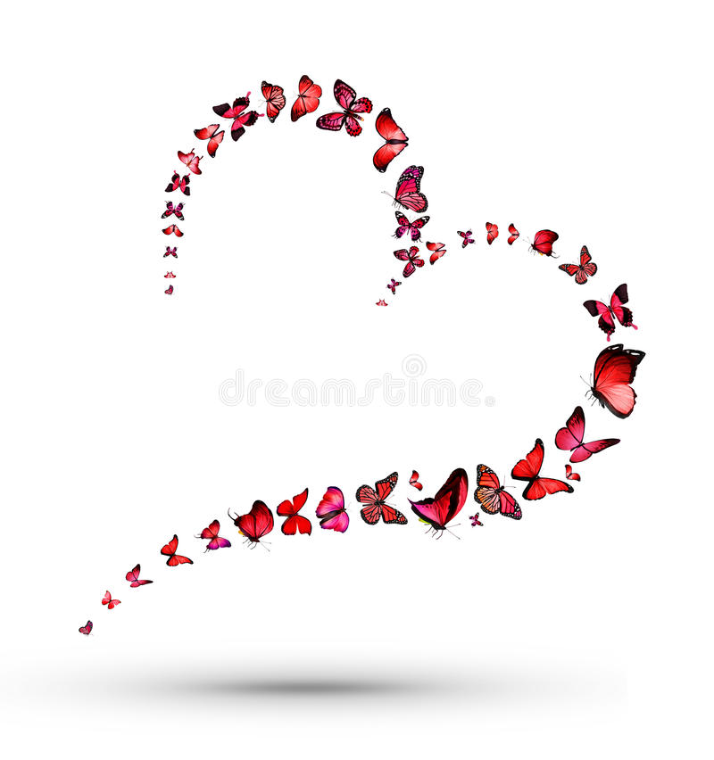 Heart with butterflies royalty free illustration