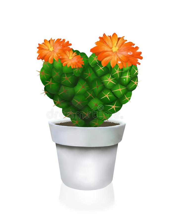 Heart Cactus In White Pot Stock Images