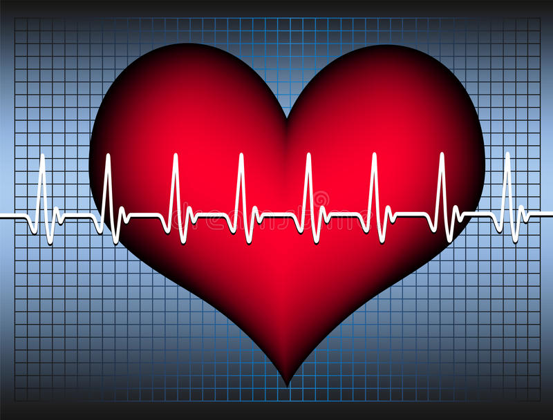 Heart and cardiogram royalty free stock photos