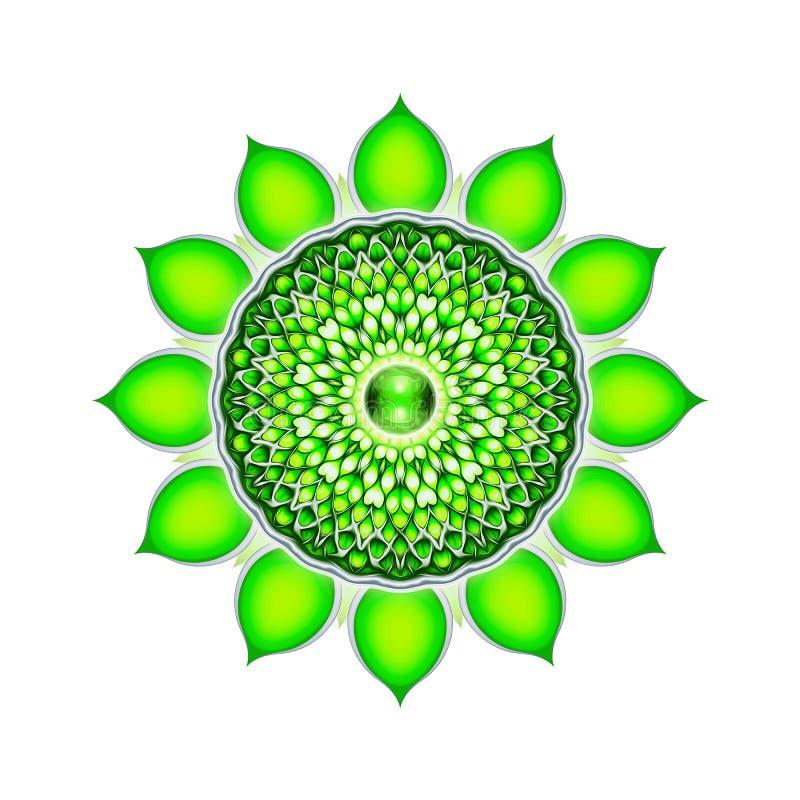 The Heart Chakra Mandala. Illustration of the heart chakra vector illustration