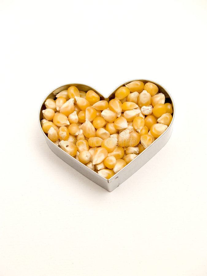 Download Heart of corn stock image. Image of maize, corn, crunchy - 8102037