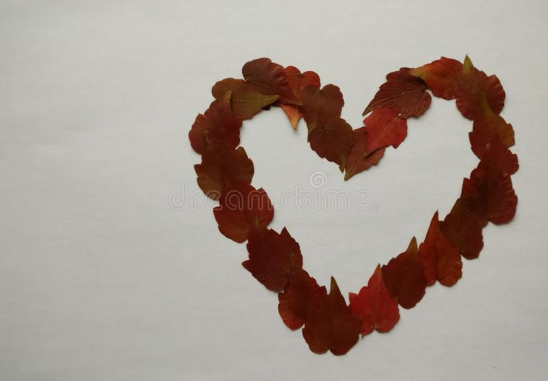 Heart created with foliage leaves stock image