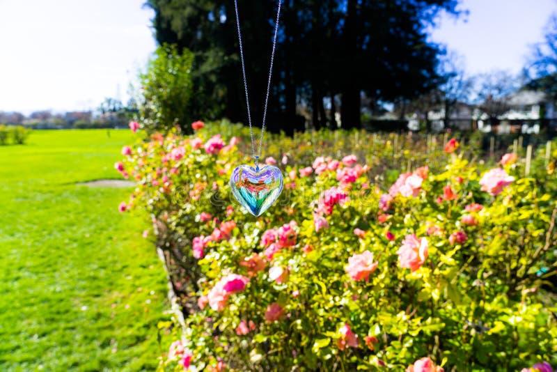 Heart crystal glass refract sunlight - sunlight clock backgroundheart crystal glass refract sunlight - rose garden background. AT 1/4/2019 in Rose garden stock photo