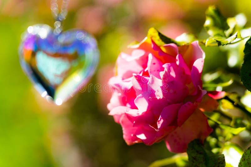 Heart crystal glass refract sunlight - sunlight clock backgroundheart crystal glass refract sunlight - rose garden background. AT 1/4/2019 in Rose garden royalty free stock photo