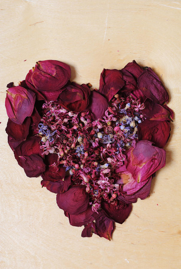 Heart of dried flowers on a wooden background royalty free stock images