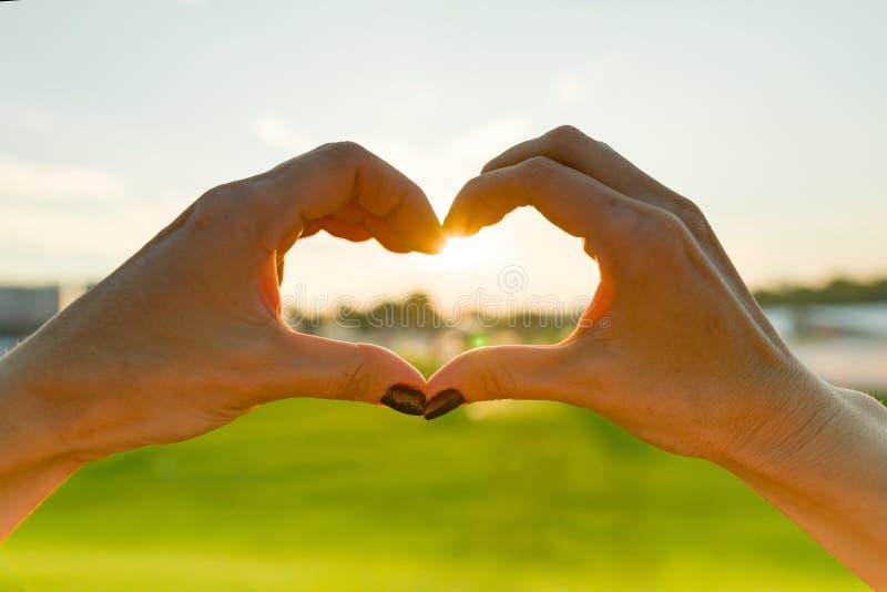 Heart from female hands, green grass sky evening sun background.  stock image
