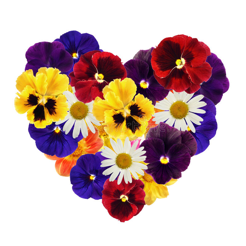 Download Heart of flowers stock image. Image of gift, graceful - 12435317