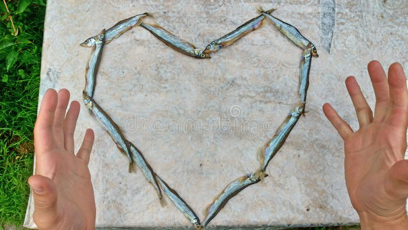 Heart of food. Heart of capelin fish. Creation, art.  royalty free stock images