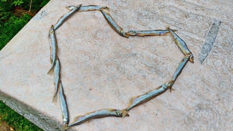 Heart of food. Heart of capelin fish. Creation, art.  royalty free stock photo
