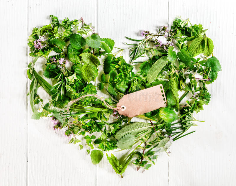 Heart formed of fresh culinary herbs stock photography