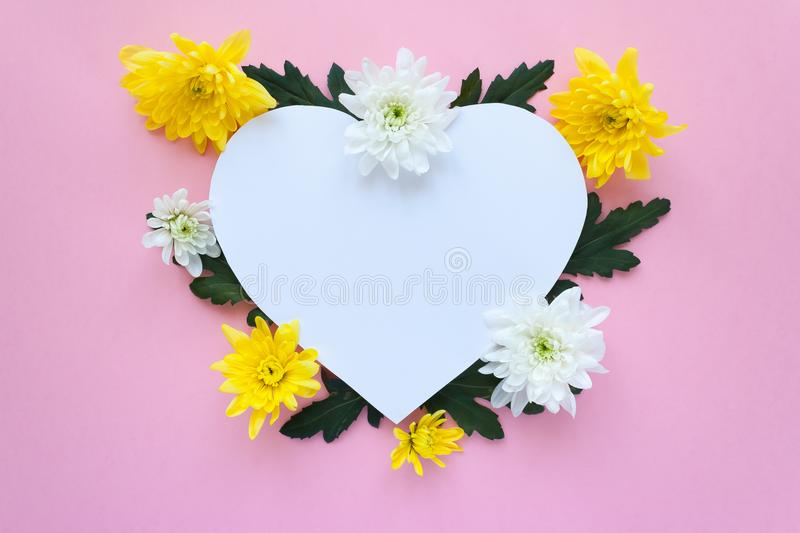 Heart frame. white and yellow chrysanthemums on a pale pink background royalty free stock image