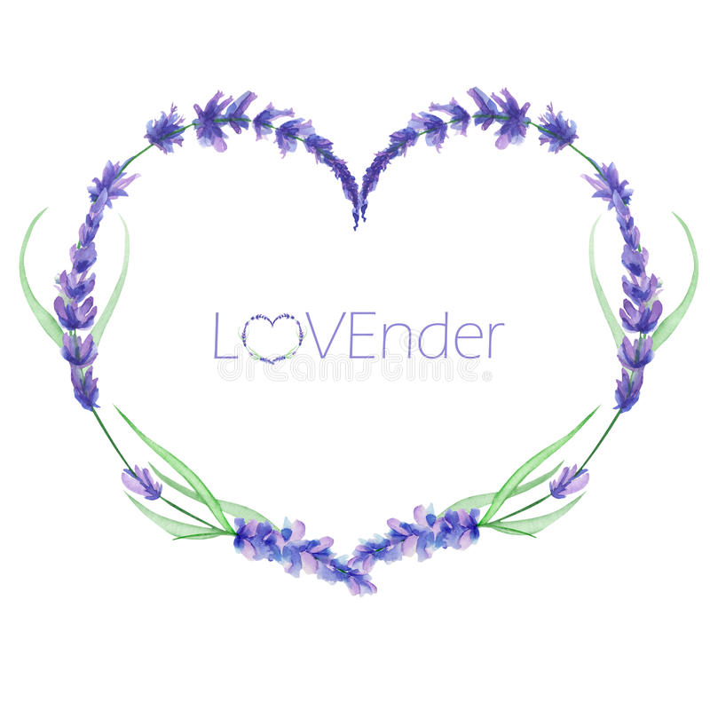 A heart frame, wreath, frame border with the watercolor lavender flowers, wedding invitation. A heart frame, wreath, frame border for a text with the watercolor royalty free illustration