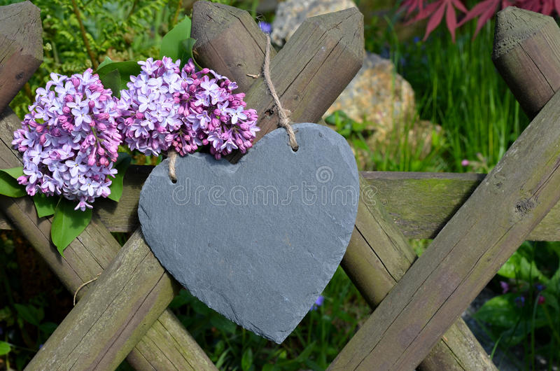 Download Heart in the garden fence stock photo. Image of petunias - 25061318