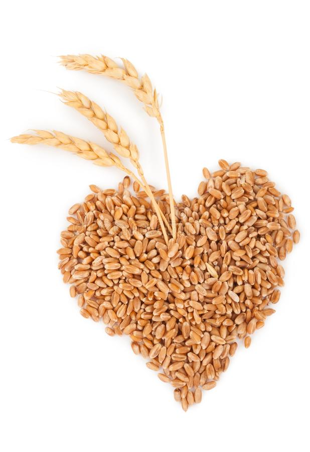 Heart of grains of wheat with spikelet. On white background stock images