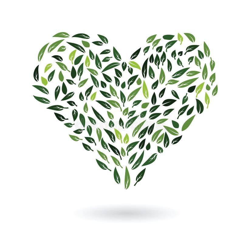 Heart from green leaves vector vector illustration