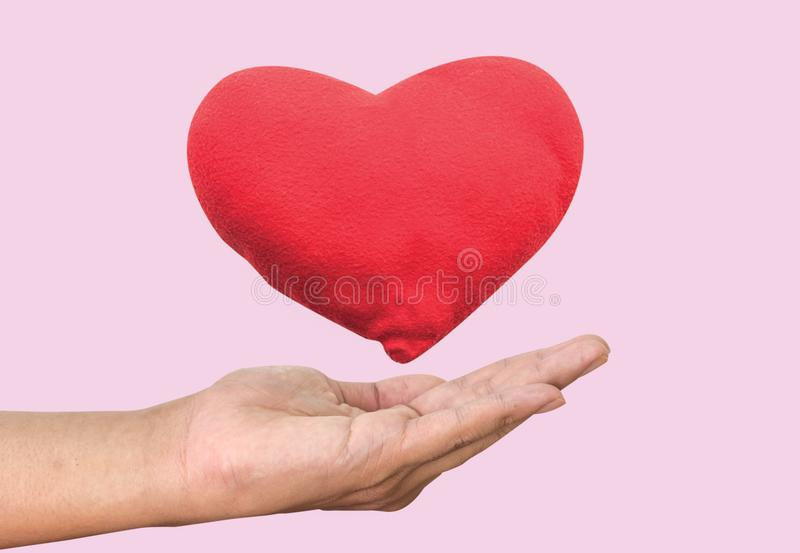 Heart in the hand stock photography