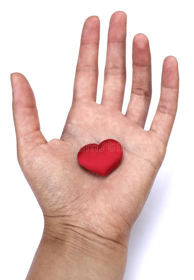 Heart in hand. Romantic concept. Big red heart in woman´s open palm isolated on white background. Symbol of love to everybody royalty free stock images