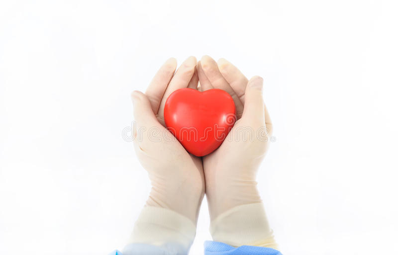 Download Heart in the hands stock photo. Image of hands, gloves - 24448750