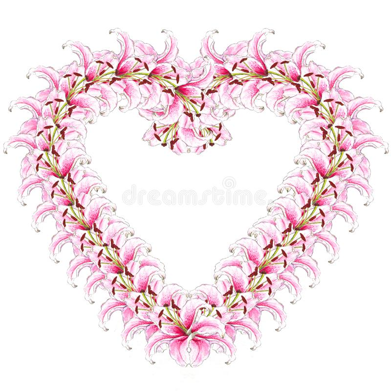 Heart of lily flowers. Floral background. Lilies. Flower pattern. Isolated on white background royalty free stock photos