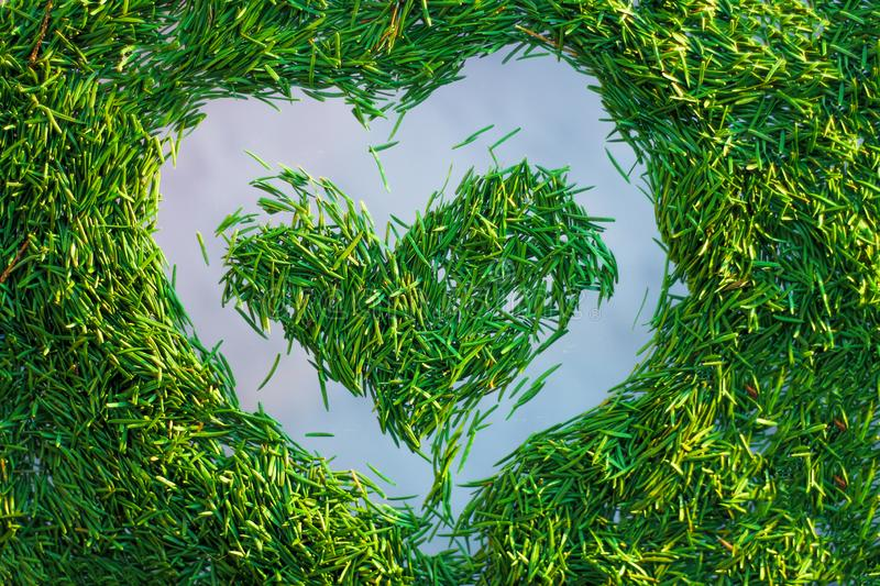 Heart lined with fir needles. new year card concept stock image