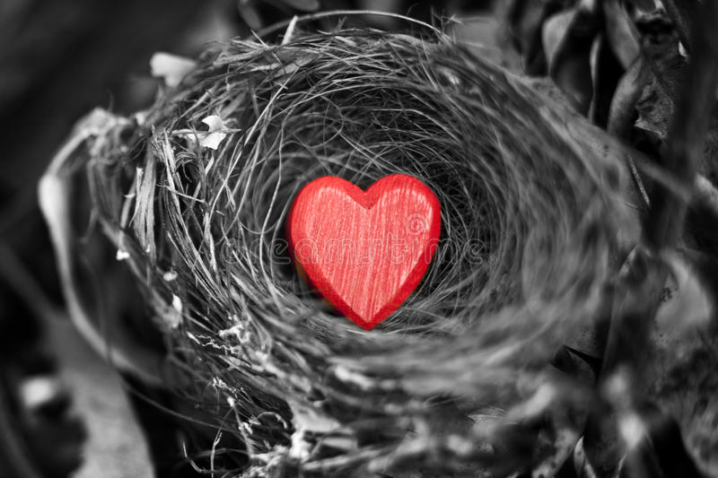 Heart Love Nest Valentines Day royalty free stock image