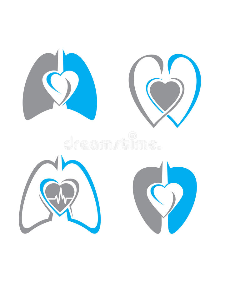 Heart and Lung stock photo