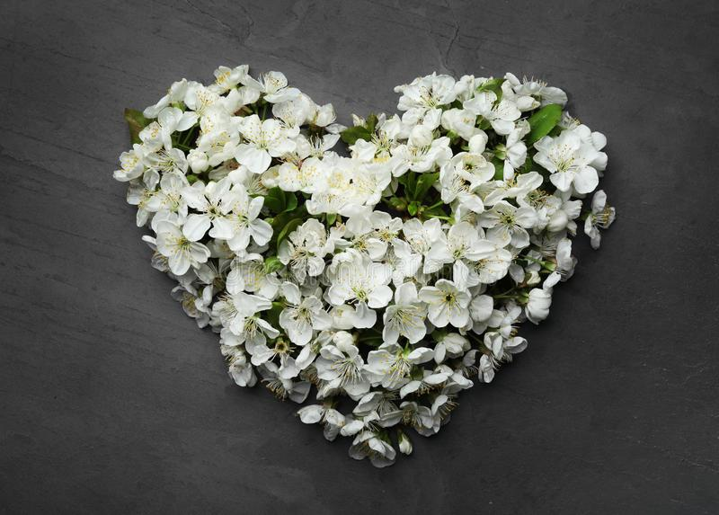 Heart made of beautiful fresh spring flowers on color background. Top view stock image