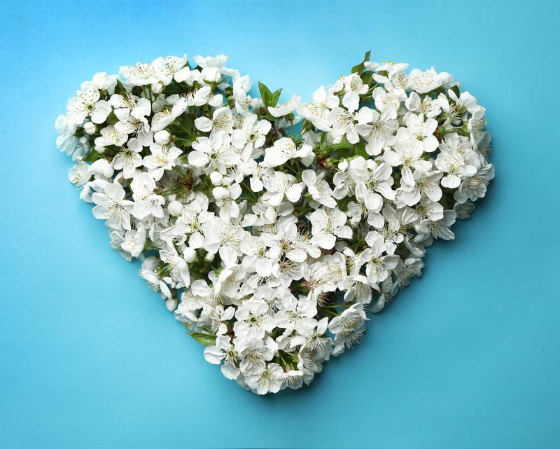 Heart made of beautiful fresh spring flowers on color background. Top view stock photography