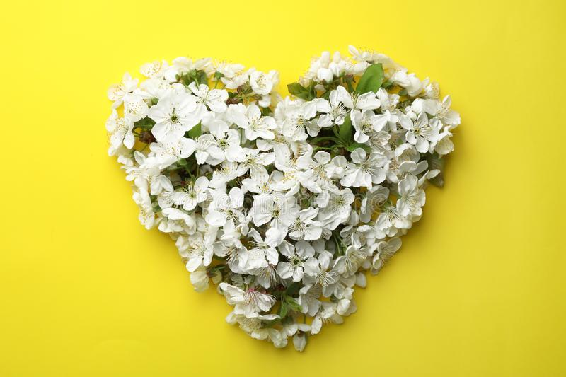 Heart made of beautiful fresh spring flowers on color background. Top view stock images