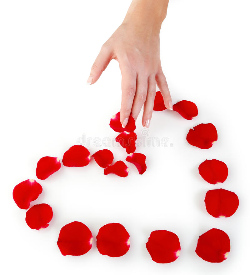 Download Heart made of petals stock image. Image of letter, rose - 23871401