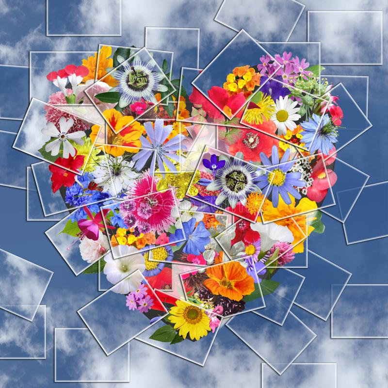 Heart made with Photography Flowers on Blue sky royalty free stock photo