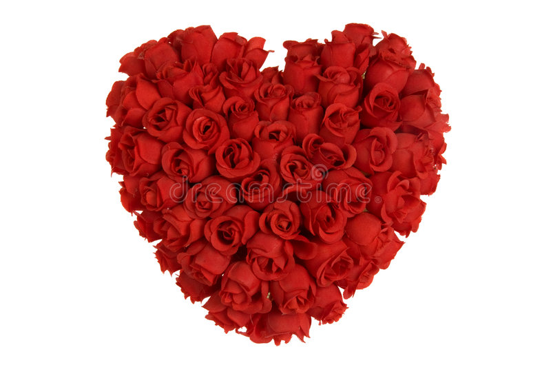 Heart made of red roses stock image