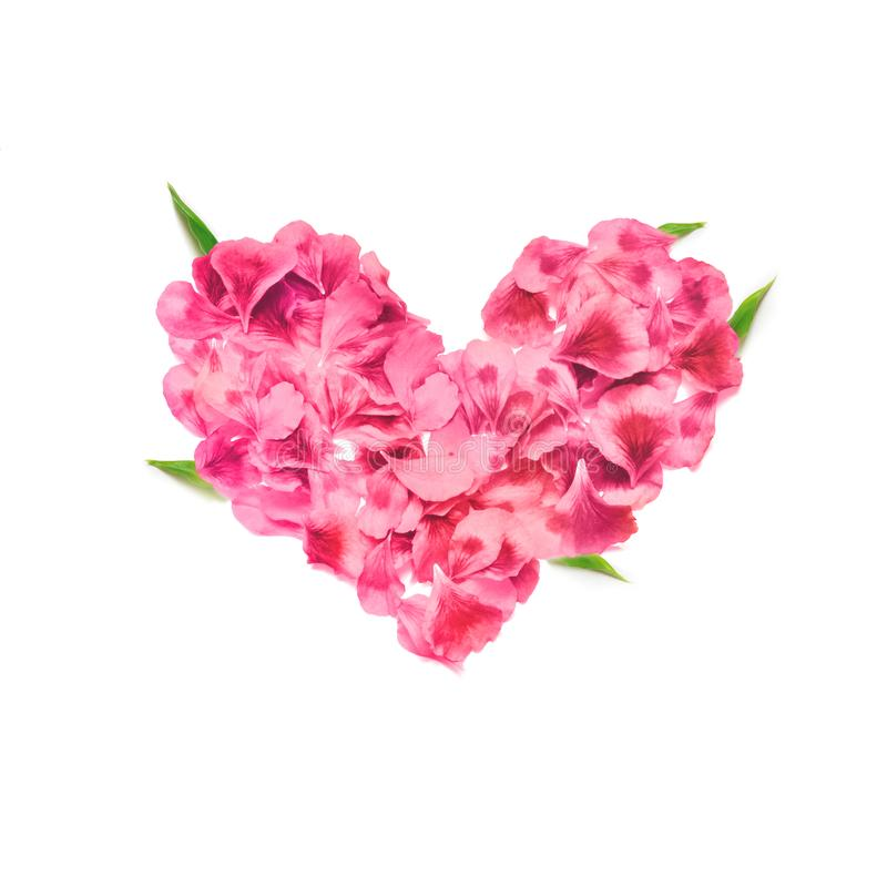 Heart made of rose petals. Red rose petals heart over white background. Top view. Love and romantic theme. Valentines day stock photos