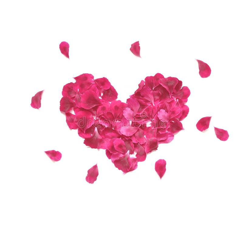 Heart made of rose petals. Red rose petals heart over white background. Top view. Love and romantic theme. stock photo
