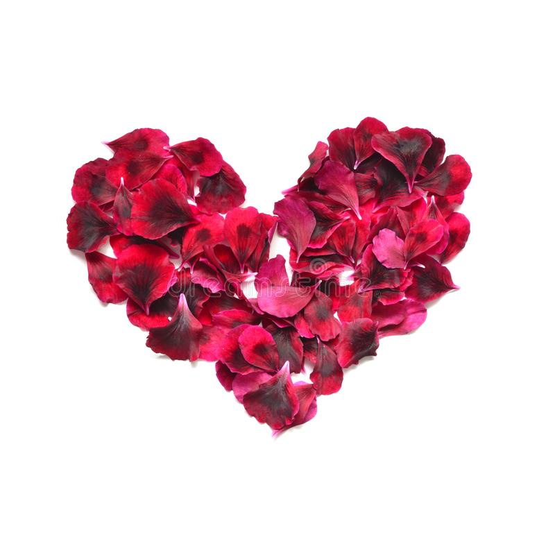 Heart made of rose petals. Red rose petals heart over white background. Top view with copy space for your text. Love and romantic royalty free stock photo