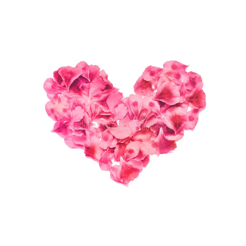 Heart made of rose petals. Red rose petals heart over white background. Top view. Love and romantic theme. royalty free stock photos