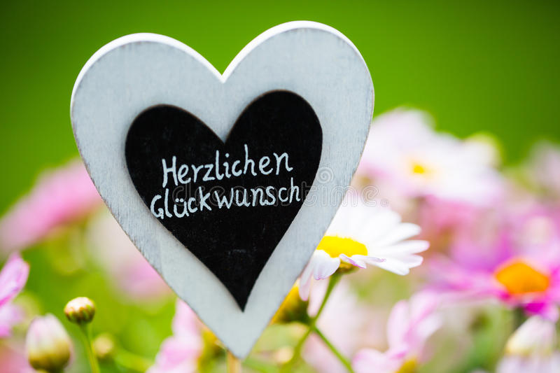 Heart with Margeriten, text,. `Congratulations royalty free stock photography
