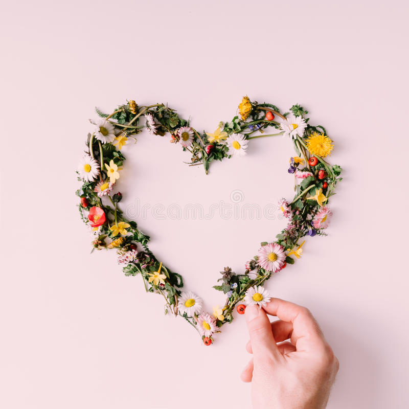 Heart of nature. Love concept. Flat lay. royalty free stock image