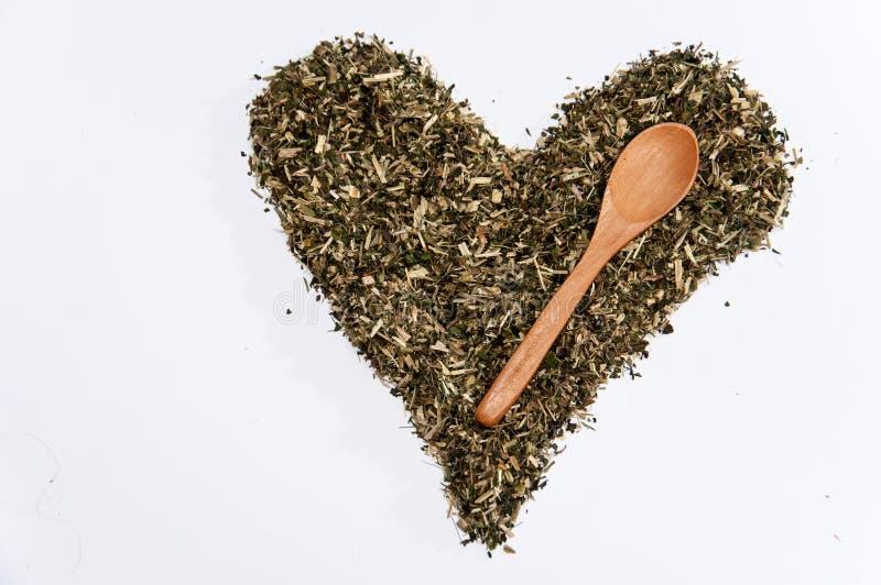 Heart of nettle tea on the white background.  stock photos